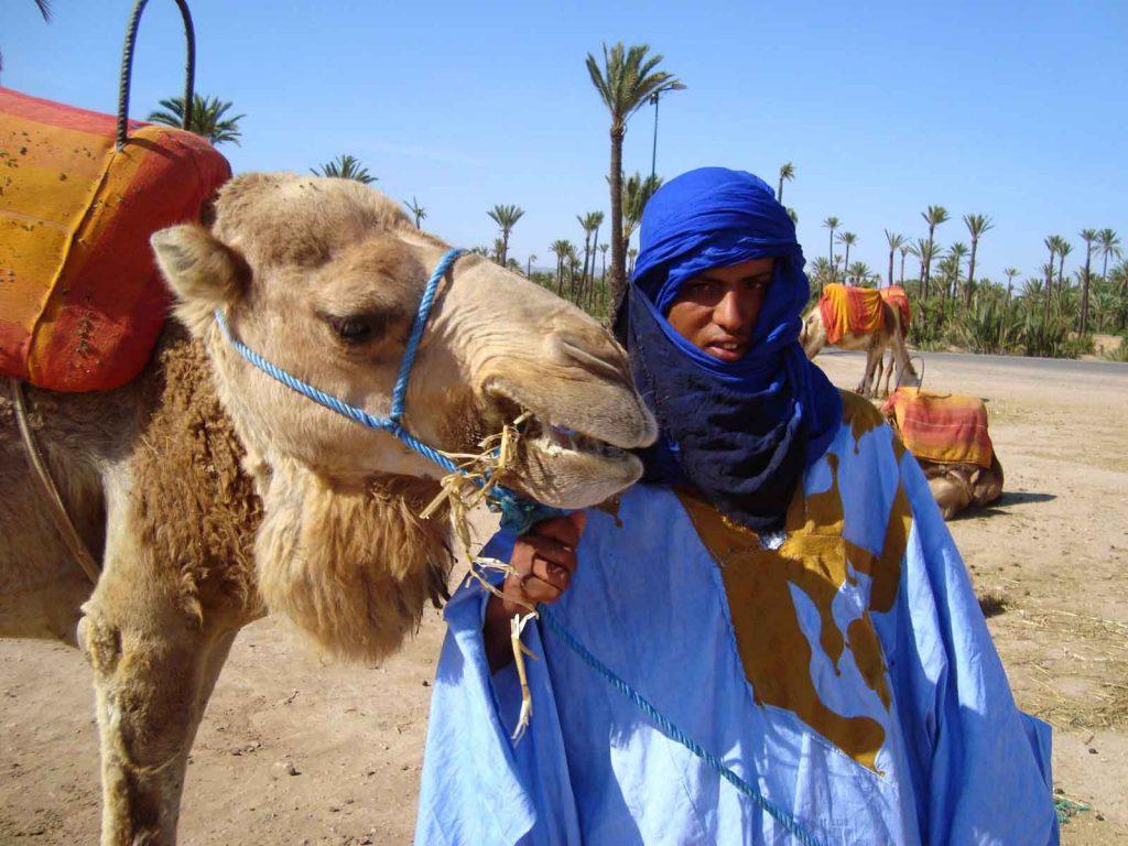 camel-treks-marrakech-day-trip-excursions-1024×768